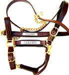 Padded Leather Halters with Matching Lead Shanks Nameplates Included