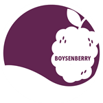Boysenberry 12 oz.