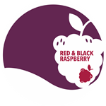 Red & Black Raspberry Jam, 12 oz.