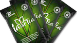 IASO Tea-4 Pack (1 Month Supply)