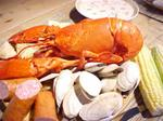 3 lb Maine Lobsters (Priced per lobster)