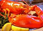 2 Pound Maine Lobsters - Priced per Lobster <br><br><font size=''1''>(Click for Details)</font>