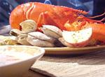 1 pound to 1.25 pound Maine Lobster (Priced per Lobster)