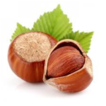 Hazelnut - Regular E-Liquid/E-Juice