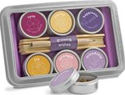 GROWING WISHES-JOY FLOWERS TIN SET
