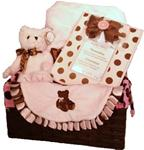 BEARINGTON BABY POSH DOTS PINK GIFT BASKET-SMALL