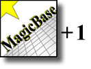 MagicBase Pro Dual-System License Addendum