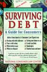 A Guide to Surviving Debt