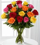 18 Mixed Colored Roses