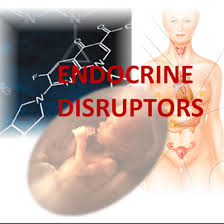 1330 B.E.$.T. Endocrine Disrupting Chemicals Treatments: Read More...