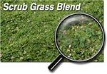 32 oz Shaker Flock/Turf  Scrub Grass Blend  course