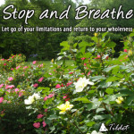 CD: Stop and Breathe
