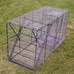 Dog Traps - 18″ wide x 18″ high x 48″ long