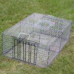Pigeon, Pheasant, Duck & Chicken Combination Traps - 12″ wide  x 24″ high  x 36″ long