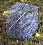 Bird Traps - Medium/Small
