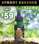 Moringa Sprout Essence