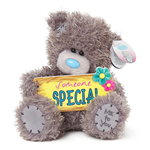 "Me To You 7"",Tatty Teddy ""SOMEONE SPECIAL PLAQUE"" Plush"