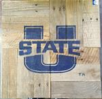 Utah State Wallboards