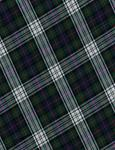 Tartan Plaid Blue/Green