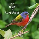 #1 The Birds of Roy's Pond