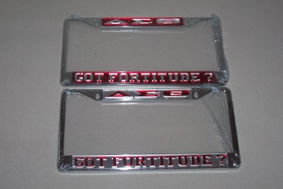 Delta Mirror License Plate Frames Greeks R Us
