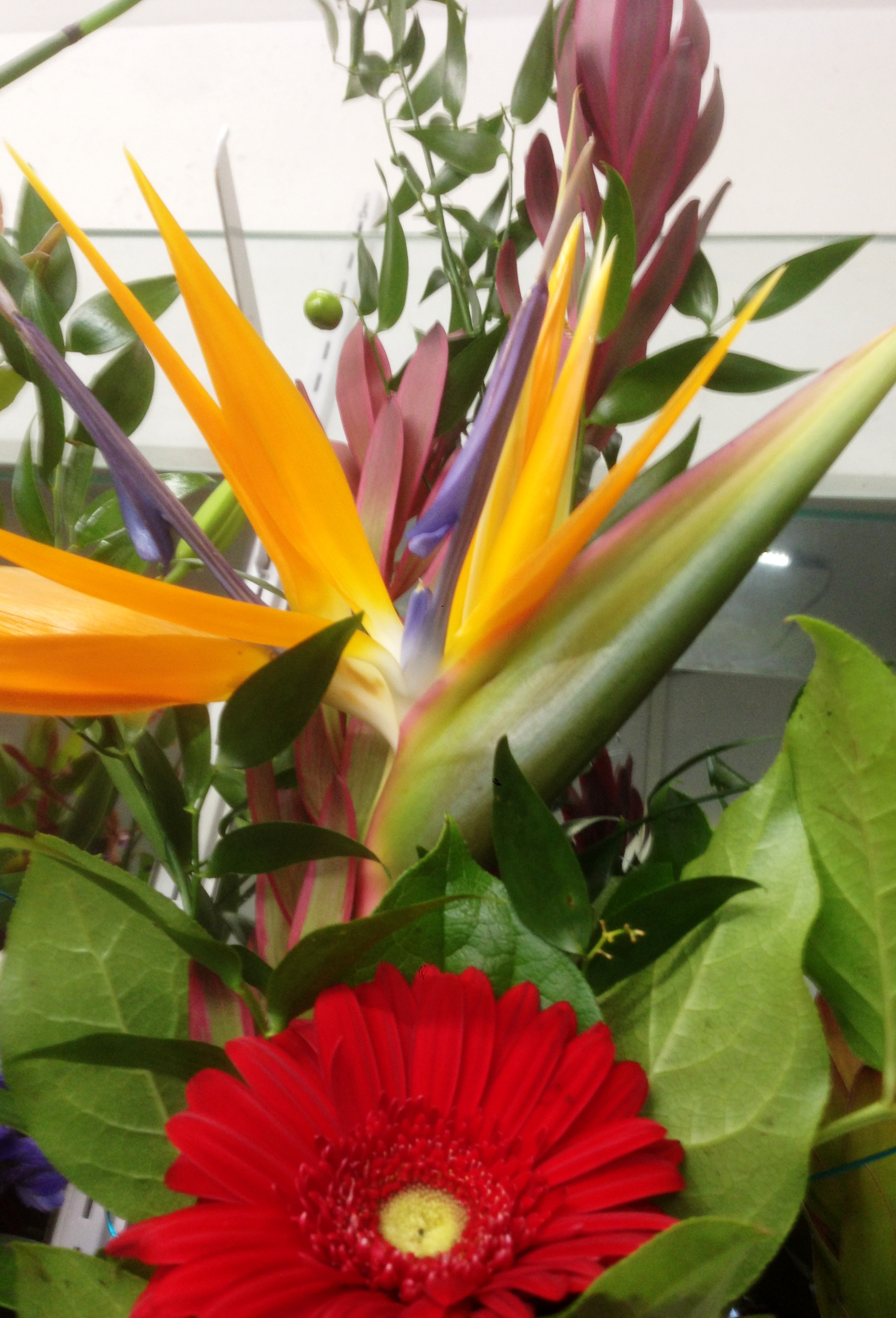 A Exotic Spring Flowers Seasonal Product Pilchers Flowers Gifts