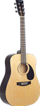 Johnson 615 Player Series Acoustic Guitar