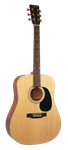 Johnson 645 Player Series Acoustic Guitar