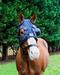 Equine Eye Protection Cup System