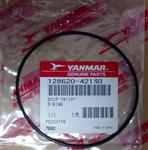 Cover Gaskets #128620-42130