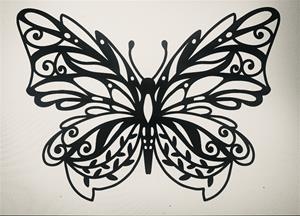 Butterfly Design no fill