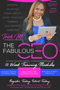 The Fabulous CEO Program