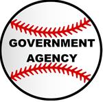 3. GOVERNMENT AGENCY