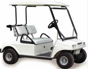 4 Passenger Golf Cart Rental