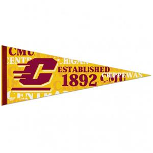 Central Michigan University Pennant