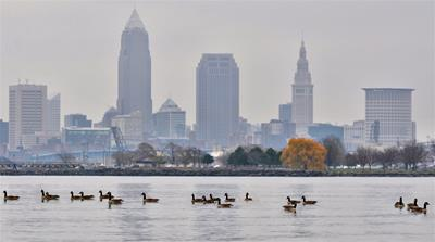 Cleveland Geese