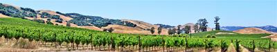 America's Wine Country