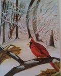 "Cardinal Holiday Card Water Color 4"" x 6"""
