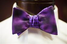 2 in 1 Purple Carrot & Gibbs Bowtie