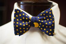 2 in 1 Navy yellow Polka Dot Carrot & Gibbs Bow Tie