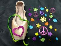 Single Decorative Pointe Shoe Kit (Flower Power)