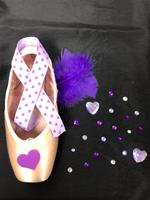 Single Decorative Pointe Shoe Kit (Purple Love)