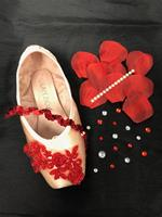 Single Decorative Pointe Shoe Kit (Petals and Lace)