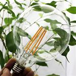 7W G40 LED Filament Bulb Clear