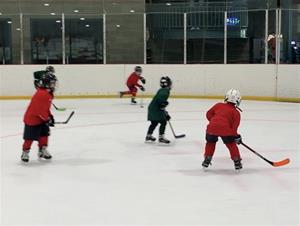 3 on 3 Cross-Ice (Peewees and Younger)
