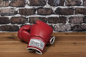 1. Heavyweight Boxing Gloves