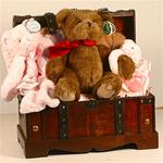 The Toy Chest Baby Girl Gift Basket
