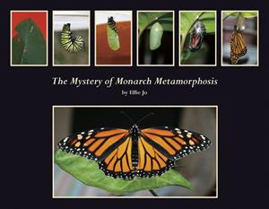 The Mystery of Monarch Metamorphosis