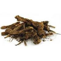 Barberry Root - Oregon Gape Powder 1 lb