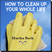 How to Clean Up Your Whole Life MP3